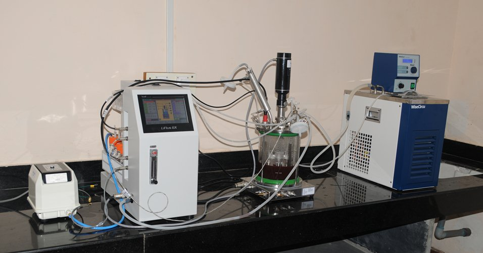 Bioreactor for fermentation