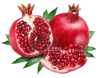 Indian Council of Agricultural Research (ICAR) - National Research Center on Pomegranate (NRCP), Solapur |भारतीय कृषि अनुसंधान परिषद (भा. कृ. अनु. प.) - राष्ट्रीय अनार अनुसंधान केंद्र, सोलापुर